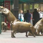 Свиньи. Торговый центр Рандл.  [Аделаида, Австралия]